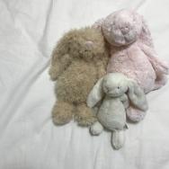 衣類以外にも使える!除菌効果で枕もスッキリ LG styler