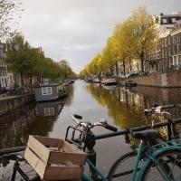 オランダ母子旅行④~オランダの勧め~