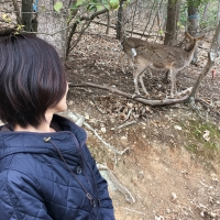 京都の遊び場~宝が池~