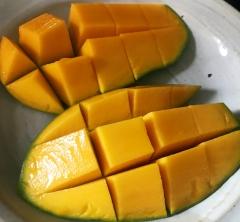 マンゴーが美味しい季節