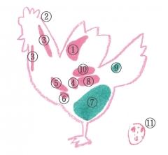 【酒場Dailytechnewsおすすめ居酒屋紹介】鳥しづ【神楽坂】#izakaya