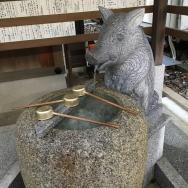 いのしし年が始まりました!◇京都・護王神社