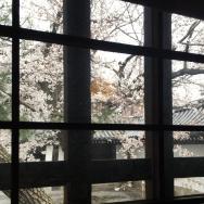 京都づくしの佛光寺さん