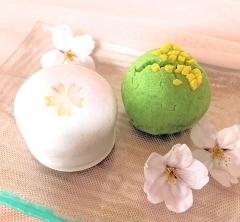 桜の見納めは金沢和菓子で 柴舟小出