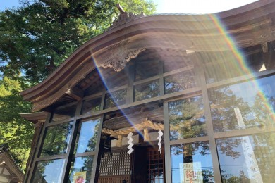 金運アップ! 日本金運三大神社に行ってきました