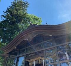金運UP!日本金運三大神社・金劔宮