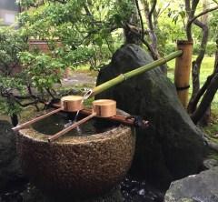 海外からのお客さまと西芳寺(苔寺)散策