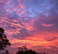 シンガポールの夕陽×シンガポールスリング