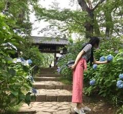 7月のいろいろ ~仙台のあじさい寺へ~