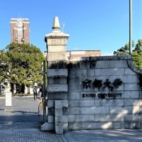 0歳からなれる京都大学研究員?!