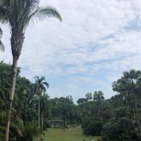 シンガポール唯一の世界遺産「シンガポール ボタニックガーデン」