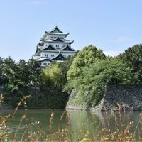 名古屋城、ジョギングコース🌿