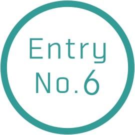 Entry No.6