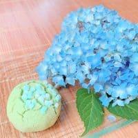 6月は紫陽花の金沢和菓子で涼やかに