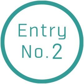 Entry No.2