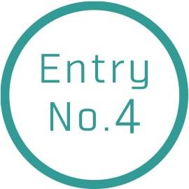 Entry No.4
