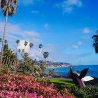 【南カリフォルニア】ヤシの木と花溢れる海沿いの街、ニューポートビーチより