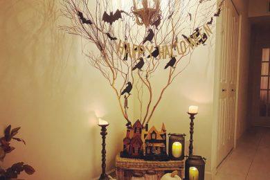 ハロウィンシーズンはお弁当にも黒&オレンジ。イベントは全力で楽しむ! 連載・Wakoさんの暮らしを楽しむTips vol.10