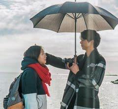 〝「愛の不時着」超え〟の<br>韓国ドラマがまだまだ見つかります!