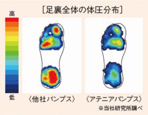 足裏全体の体圧分布