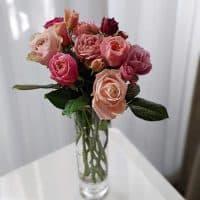 アンティークカラーの和バラと芸名の由来