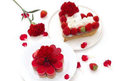 母の日の贈り物にぴったりな、 パティスリー・サダハル・アオキ・パリの限定ケーキ