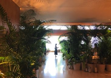 ルネ・マグリットの世界観を 「デルヴォー」×「東京エディション虎ノ門」のラグジュアリーなアフタヌーンティーで!