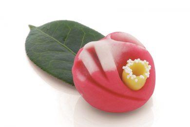 山種美術館の「Cafe 椿」に特別展をイメージした美しいオリジナル和菓子がお目見え!