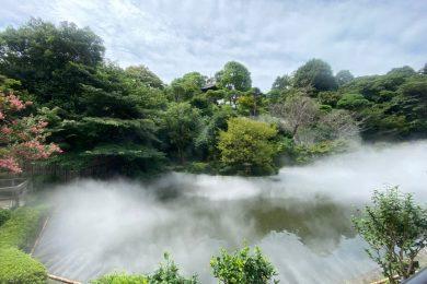 庭園を眺めながら、料亭で愉しむ日本酒香る和のアフタヌーンティー@ホテル椿山荘東京