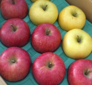 ル・クルーゼで簡単焼きりんご