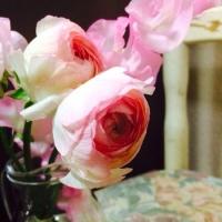 春な色、ピンク