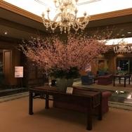 つい行きたくなる魅力的なイベントが満載!ホテル椿山荘で日本らしいおもてなしを体感・その①<br />