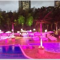 22日からナイトプールもオープン!<br />大人も楽しめるホテルニューオータニのガーデンプールへ